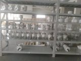 generador horizontal de las energías eólicas de la turbina de viento de 600W 24V 48V Pmg