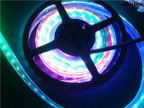 Indicatore luminoso decorativo di RGB Ws2811 di magia di DC12V Digitahi