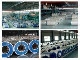 O baixo preço Prepainted a bobina de aço galvanizada PPGI na alta qualidade