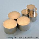 De goedkope Permanente Magneet N28-N52 van NdFeB van het Segment van de Zeldzame aarde