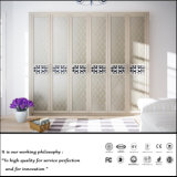 현대 상류 PVC 여닫이 문 옷장 (ZH0968)