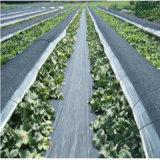 Black PP Woven Weed Barrier Mat