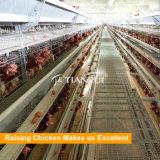 Ein-Rahmen automatischer Fußboden-Einsparung Entwurfs-Schicht-Huhn-Rahmen für Verkauf