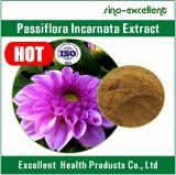 Естественная выдержка Caerulea пассифлоры выдержки пассифлоры