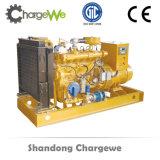 中国の工場からの無声発電機が付いている生物量の発電機