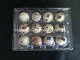Celle di plastica a perdere del contenitore 12 dell'uovo di quaglie di quaglie del contenitore di plastica dell'uovo
