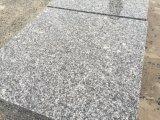 私達の自身の石切り場の薄い灰色の競争価格の磨かれたG603花こう岩のタイル