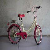 A venda quente montou a série da bicicleta (MTB-009)
