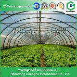 Gemüse/Garten/Blumen/Bauernhof-multi Überspannungs-Film-grünes Haus