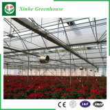 농업 다중 경간 정원 플라스틱 온실