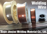 Steel inoxidable Welding Wire avec CCS, CE Certification