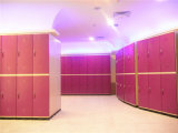 ABS Plastic Locker voor Salon