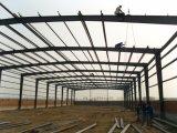 Het geprefabriceerde Pakhuis van de Structuur van het Staal voor Afrika (ZY167)