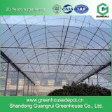 Serre chaude en plastique de plantation végétale de tunnel