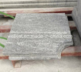 Mattonelle grige fiammeggiate del granito, raggruppamento che fa fronte, punti, bordo Bullnose