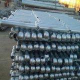Da instalação conveniente direta de Saling da fábrica cerca galvanizada quente da esfera