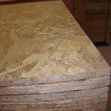 Qualität Best Price OSB für Furniture Use