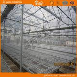 Multi-Span Film Greenhouse per Seeding Built nel Giappone