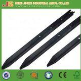 Schwarzer Bitumen-Australien-Typ Stern-Pfosten für schützendes Fencings