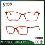 Monocolo Eyewear T6003 del telaio dell'ottica di vetro di modo Tr90 di alta qualità