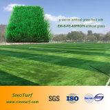 Erba artificiale ad alta densità (filato di figura della spina dorsale) per calcio, gioco del calcio, Futsal