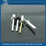 Type ouvert rivet principal voûté en aluminium d'abat-jour de /Steel de rivet