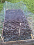 Hexagonal Heavy Wire Netting for Gabion Competitive Tennis shoe with Price