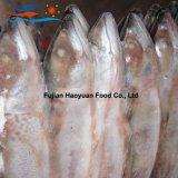 De productie Bevroren Vreedzame Makreel van Zeevruchten