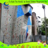 Fiberglas-Felsen-Kletternwand für Innenim freiengymnastik