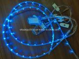 Alta luz de tira de Quanlity barato 3528 RGB LED para la planta del pie del zapato