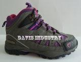 熱い販売の新しいデザインは高品質の屋外のハイキングの移住の防水スポーツの靴をからかう