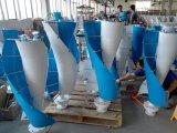 Generador de turbina vertical espiral de viento del eje de la CA 12V 100W pequeño (SHJ-NEV100S)