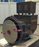 Generator In drie stadia van S.A. van S.A. /Double van Stamford van het exemplaar de Enige Brushless