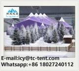 Tent van de Markttent van de Partij van het Huwelijk van de Mengeling van het aluminium Glass/PVC de Hoge Piek voor 200/300/500/1000 van Mensen