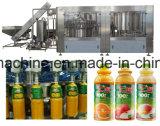 De volledige Lopende band van het Vruchtesap Van de Vruchten en Vagetables van de Verwerking
