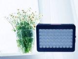 Diodo emissor de luz energy-saving Gow 300W claro com vegetais e flor