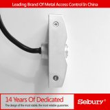 Metallc$anti-vandale Entwurfs-Zugriffs-Controller-Tastaturblock (sKey W-W)
