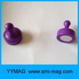 5カラー透過明確で装飾的な磁気Pinの磁石