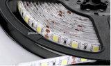Jardim da luz de tira do diodo emissor de luz de SMD 5050