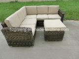 قطاعيّة مستديرة [رتّن] أريكة محدّد خارجيّ حديقة [ويكر] أثاث لازم