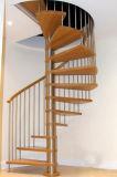 木製の踏面が付いている流行の螺旋階段