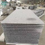 Carrelage en granit de carrelage / carreau G603