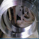 Гальванизированный овальный провод и провод горячего DIP стальной