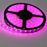Hoher rosafarbener Streifen der Helligkeits-IP67 der Farben-SMD5050 des Chip-60LEDs 14.4W DC12V LED