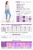 2017 pantaloni correnti del più nuovo delle donne di Legging dei pantaloni ultimo di yoga di sport di usura delle signore di compressione essiccamento di Quicky