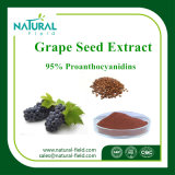 Plant Health Care Producto extracto de uva Extracto de semilla de Procianidólicos de Cuidado de la Piel