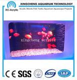 Prix de tarte au poisson acrylique transparent personnalisé