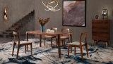 Cadeira da noz nórdica moderna do estilo e tabela de madeira do quadrado (HC6913)