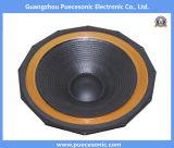 Fahrer-Audio des Lautsprecher-Xs21t500 Berufs2400w