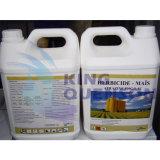Comité technique de l'atrazine 98% du Roi Quenson Systemic Herbicide Weedicide (90% WDG, 80% wp, Sc de 50%)